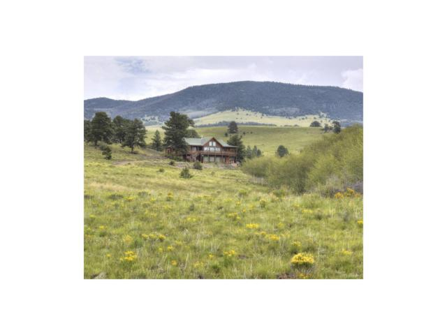 4647 Cty Rd 16, Cotopaxi, CO 81223 (MLS #9066427) :: 8z Real Estate