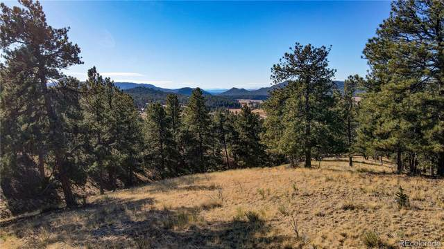 691 S Mountain Estates Road, Florissant, CO 80816 (MLS #9066920) :: 8z Real Estate