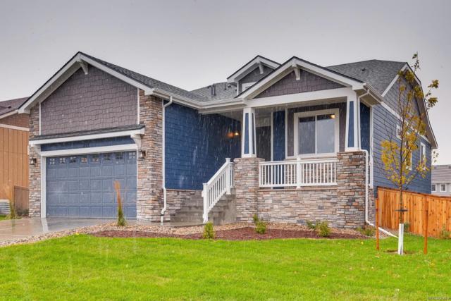 293 Calhoun Circle, Castle Rock, CO 80104 (#9067680) :: The HomeSmiths Team - Keller Williams