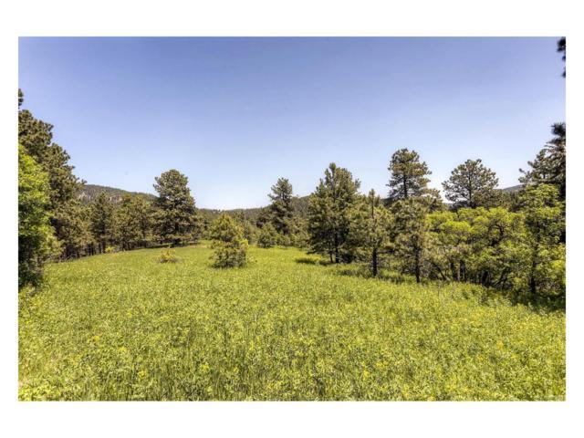 00000 N Turkey Creek Road, Morrison, CO 80465 (MLS #9068528) :: 8z Real Estate