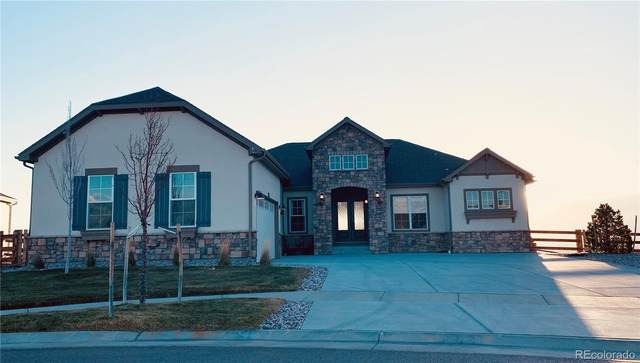 8862 Antero Court, Arvada, CO 80007 (#9068558) :: Peak Properties Group