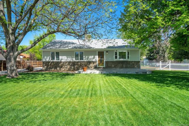 130 S Hoyt Street, Lakewood, CO 80226 (#9072807) :: The City and Mountains Group