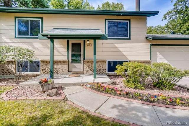 9186 W 89th Court, Westminster, CO 80021 (MLS #9072914) :: 8z Real Estate