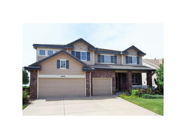 6022 S Telluride Circle, Aurora, CO 80016 (MLS #9073372) :: 8z Real Estate