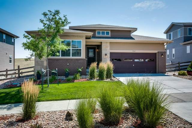 9345 Pike Way, Arvada, CO 80007 (#9073604) :: The DeGrood Team