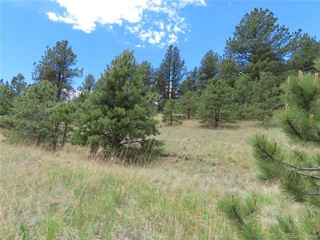 Conestoga Creek Road, Florissant, CO 80816 (MLS #9076127) :: 8z Real Estate