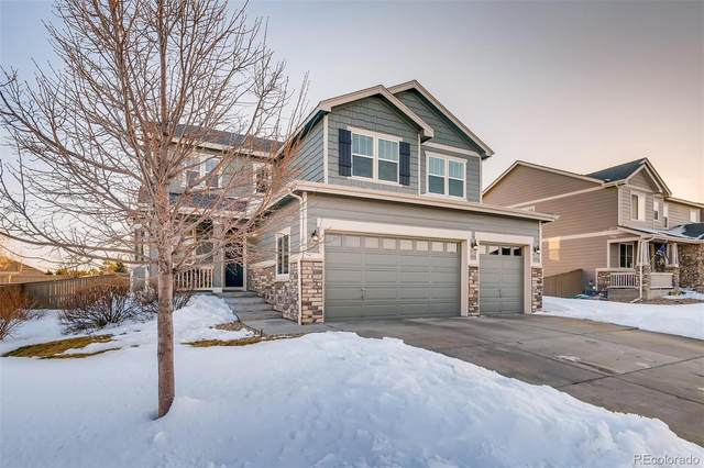 717 Springvale Road, Castle Rock, CO 80104 (MLS #9079759) :: The Sam Biller Home Team