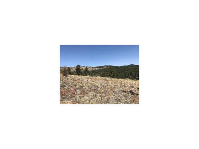 15699 Ouray Road, Pine, CO 80470 (MLS #9080991) :: 8z Real Estate