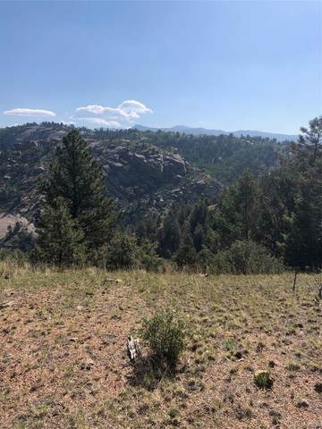 1101 Dandy Jim Drive, Cripple Creek, CO 80813 (#9083807) :: Real Estate Professionals