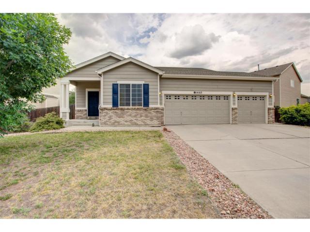 14163 Tern Drive, Colorado Springs, CO 80921 (MLS #9087183) :: 8z Real Estate
