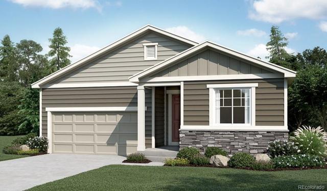 768 Blue Teal Drive, Castle Rock, CO 80104 (#9087572) :: The Peak Properties Group