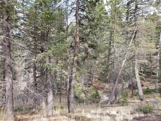 80 Handcart Circle E, Florissant, CO 80816 (MLS #9095895) :: 8z Real Estate