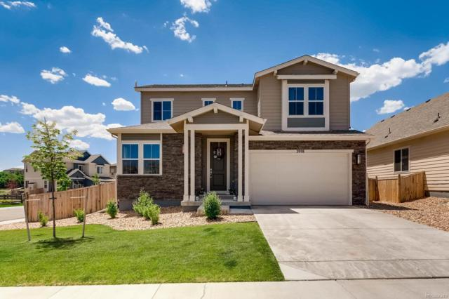3998 Long Rifle Drive, Castle Rock, CO 80108 (#9096754) :: The City and Mountains Group