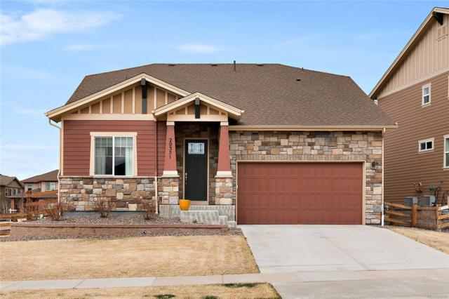 20351 Twin Pine Avenue, Parker, CO 80134 (#9097767) :: The Peak Properties Group
