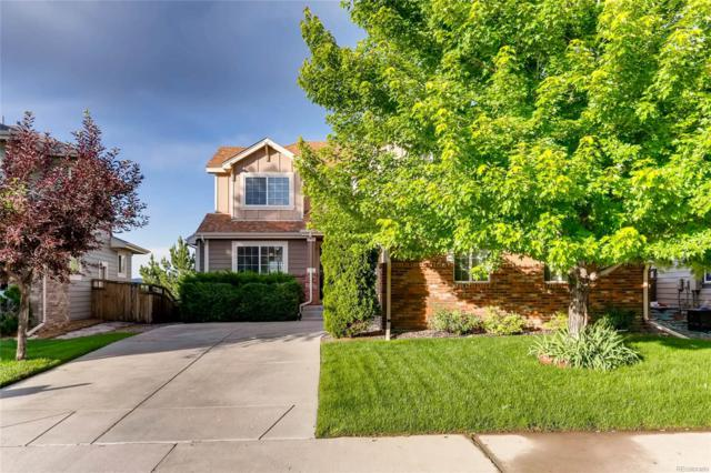 3308 Willowrun Drive, Castle Rock, CO 80109 (#9097829) :: HomeSmart Realty Group
