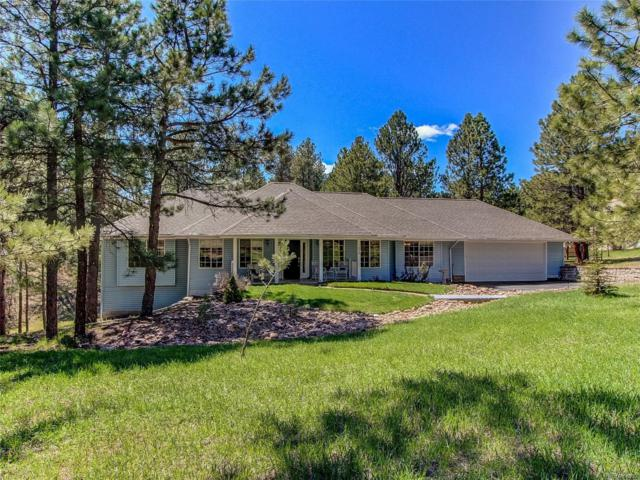 1038 Tenderfoot Drive, Larkspur, CO 80118 (#9100485) :: The HomeSmiths Team - Keller Williams