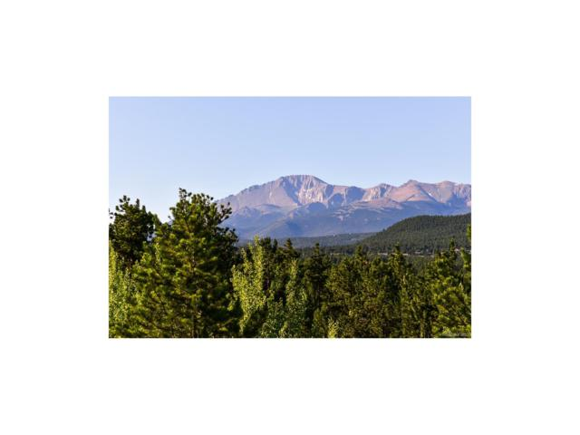 585 Pembrook Drive, Woodland Park, CO 80863 (MLS #9104506) :: 8z Real Estate