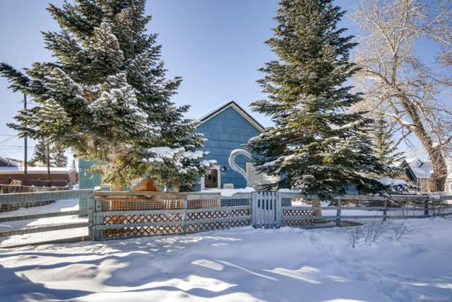 427 E 8th Street, Leadville, CO 80461 (#9106671) :: HomePopper