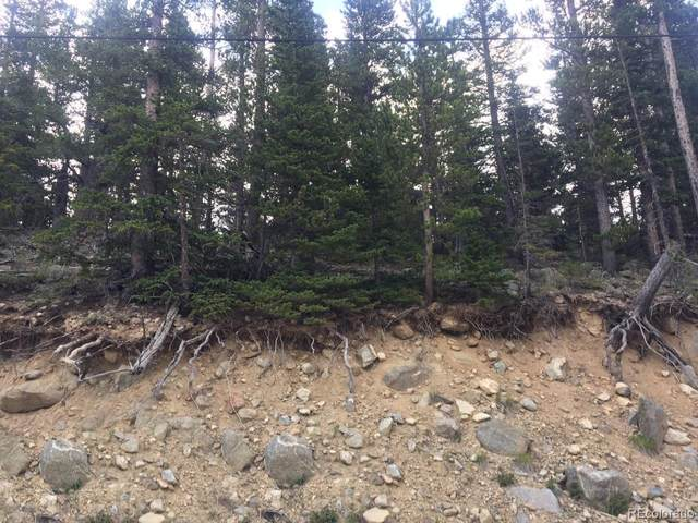 Winterland Lot 31, Idaho Springs, CO 80452 (#9115450) :: The Healey Group