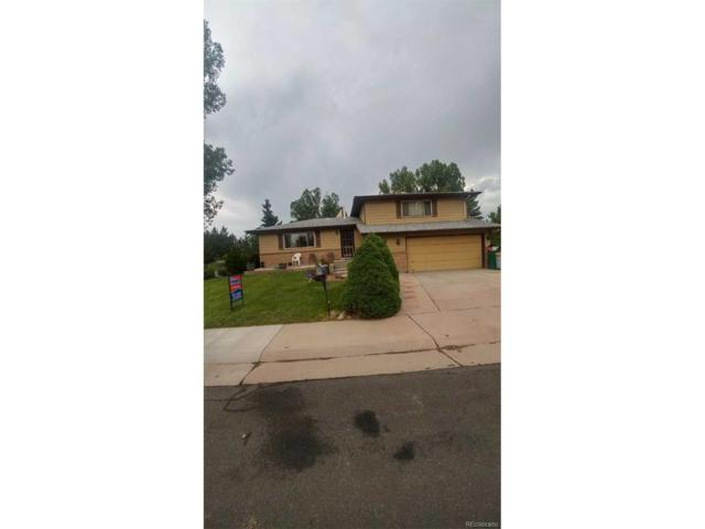 9685 Newton Street, Westminster, CO 80031 (MLS #9115767) :: 8z Real Estate