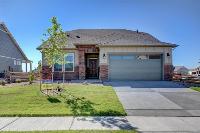 15644 Syracuse Way, Thornton, CO 80602 (#9118767) :: The Tamborra Team