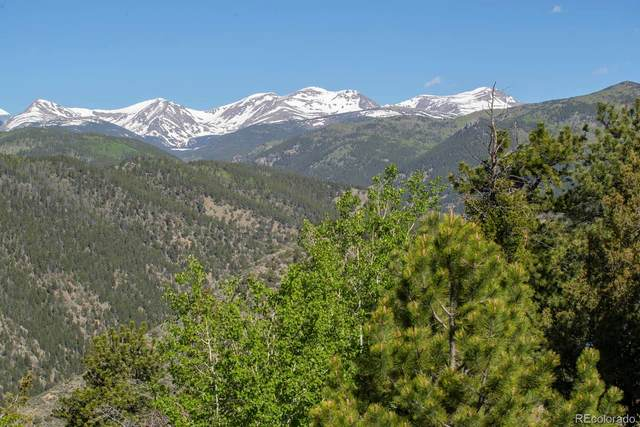270 S Saddle Drive, Idaho Springs, CO 80452 (#9122127) :: Wisdom Real Estate