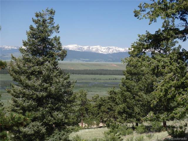 Bonell Drive, Fairplay, CO 80440 (MLS #9122583) :: Bliss Realty Group