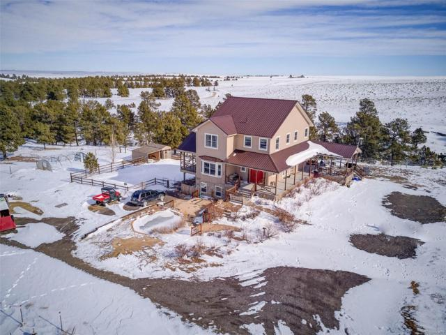 25545 Shorthorn Circle, Ramah, CO 80832 (#9123935) :: The Peak Properties Group