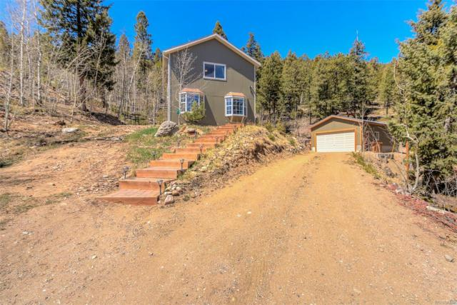 1601 S Pine Drive, Bailey, CO 80421 (#9124359) :: The Peak Properties Group