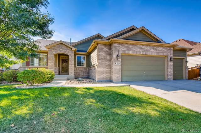 6515 Black Mesa Road, Frederick, CO 80516 (MLS #9125466) :: The Sam Biller Home Team