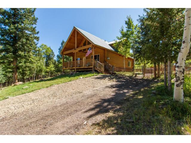 488 N Pine Drive, Bailey, CO 80421 (MLS #9127939) :: 8z Real Estate