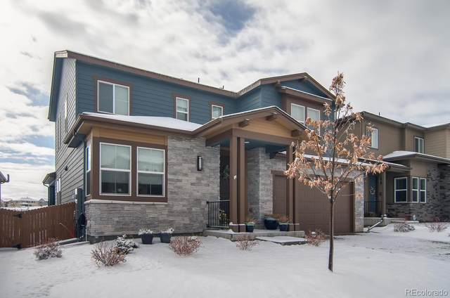 3676 Ghost Dance Drive, Castle Rock, CO 80108 (#9129108) :: The Harling Team @ Homesmart Realty Group