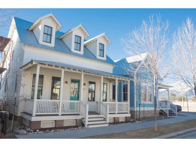 1103 River Park Road, Buena Vista, CO 81211 (MLS #9130654) :: 8z Real Estate
