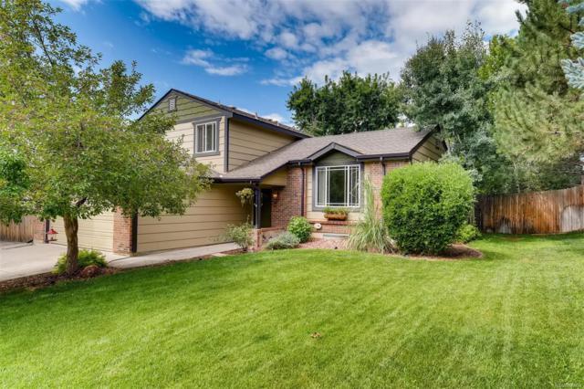 7361 S Carr Court, Littleton, CO 80128 (MLS #9132247) :: 8z Real Estate