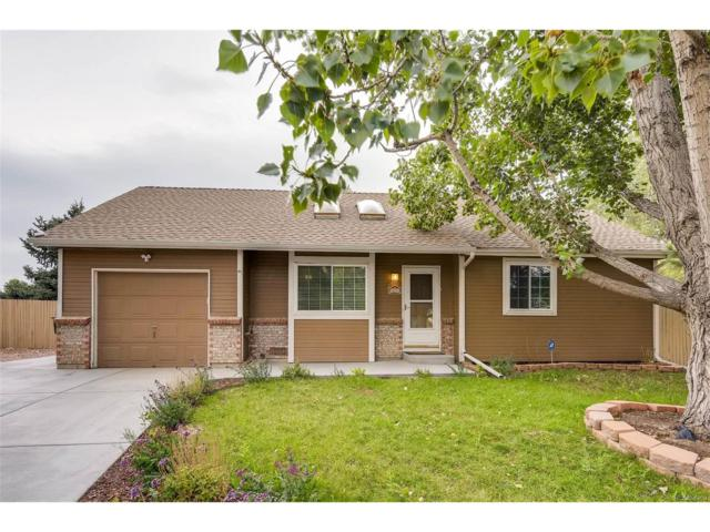 9894 Cook Street, Thornton, CO 80229 (MLS #9134108) :: 8z Real Estate