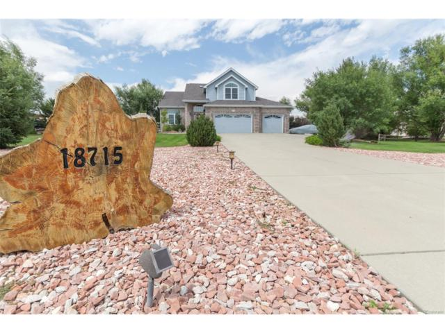 18715 Wagon Trail, Mead, CO 80542 (MLS #9135864) :: 8z Real Estate