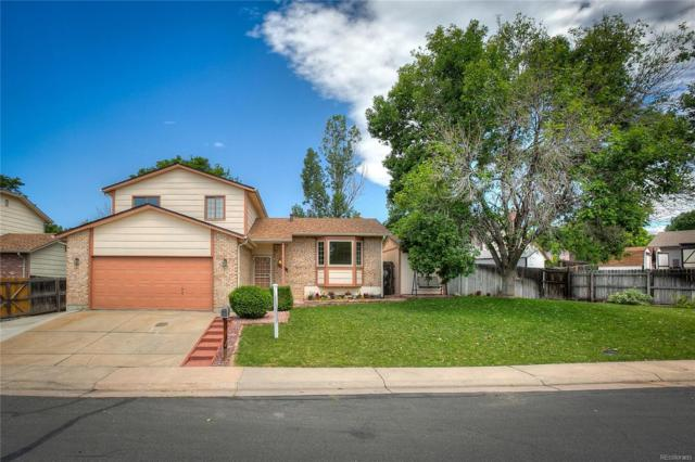 10129 Elizabeth Street, Thornton, CO 80229 (#9136997) :: HomePopper