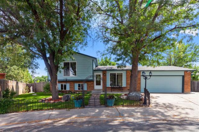 11102 Dahlia Way, Thornton, CO 80233 (#9140335) :: The Peak Properties Group