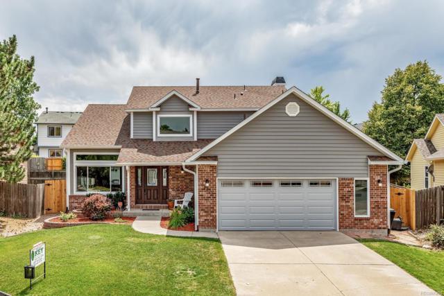 12226 W Crestline Drive, Littleton, CO 80127 (MLS #9141902) :: 8z Real Estate