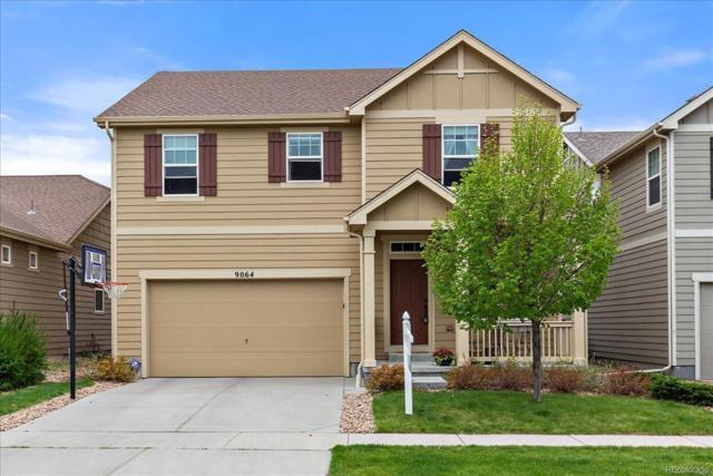 9064 Ellis Way, Arvada, CO 80005 (MLS #9145897) :: 8z Real Estate