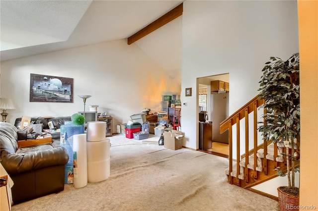 7163 S Nelson Court, Littleton, CO 80127 (MLS #9146478) :: 8z Real Estate
