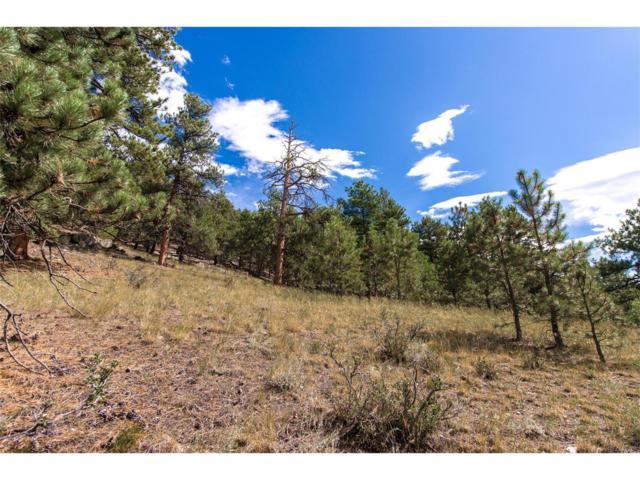 1788 Kerr Gulch Road, Evergreen, CO 80439 (#9151506) :: The Peak Properties Group