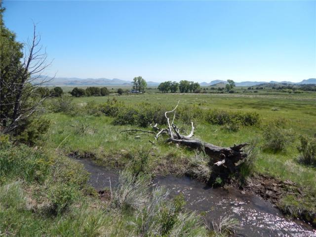 County 14 Road, Del Norte, CO 81132 (MLS #9151920) :: Kittle Real Estate