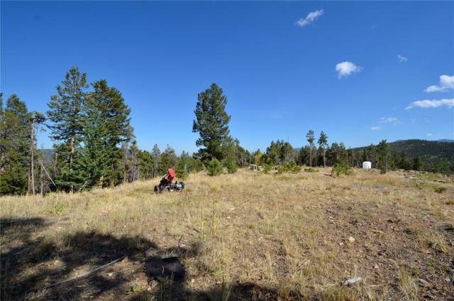 00000 Gumtree Road, Idaho Springs, CO 80452 (#9154331) :: Wisdom Real Estate