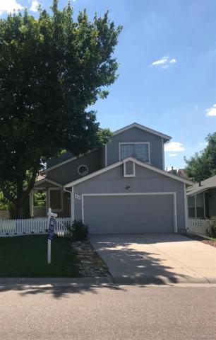 525 Arden Circle, Highlands Ranch, CO 80126 (#9155684) :: My Home Team