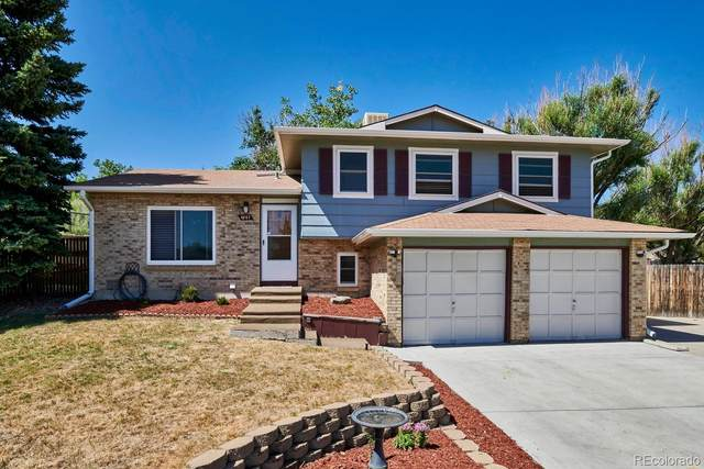 4987 S Urban Court, Morrison, CO 80465 (MLS #9157321) :: 8z Real Estate