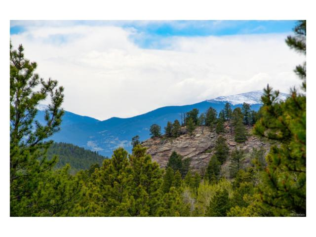 10902 Conifer Mountain Road, Conifer, CO 80433 (MLS #9158184) :: 8z Real Estate