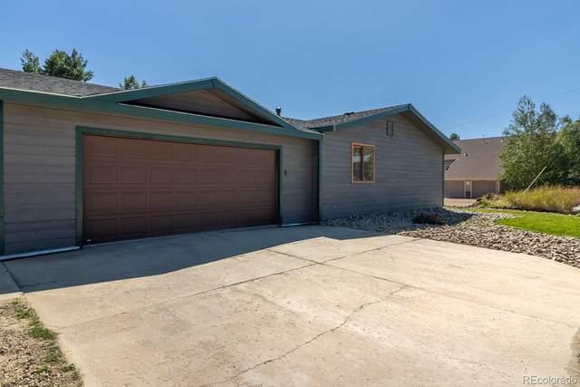 313 Elk Lane, Grand Lake, CO 80447 (#9158619) :: The Scott Futa Home Team