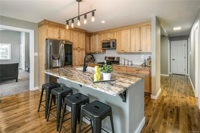 251 Aspen Lane, Bailey, CO 80421 (MLS #9158956) :: 8z Real Estate
