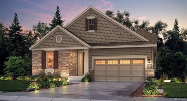 2382 Provenance Street, Longmont, CO 80504 (MLS #9159639) :: 8z Real Estate